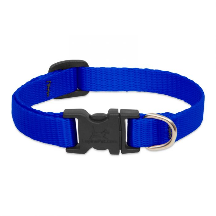 Lupine Pet Adjustable Dog Collar, Blue, 1/2-in x 8-12-in