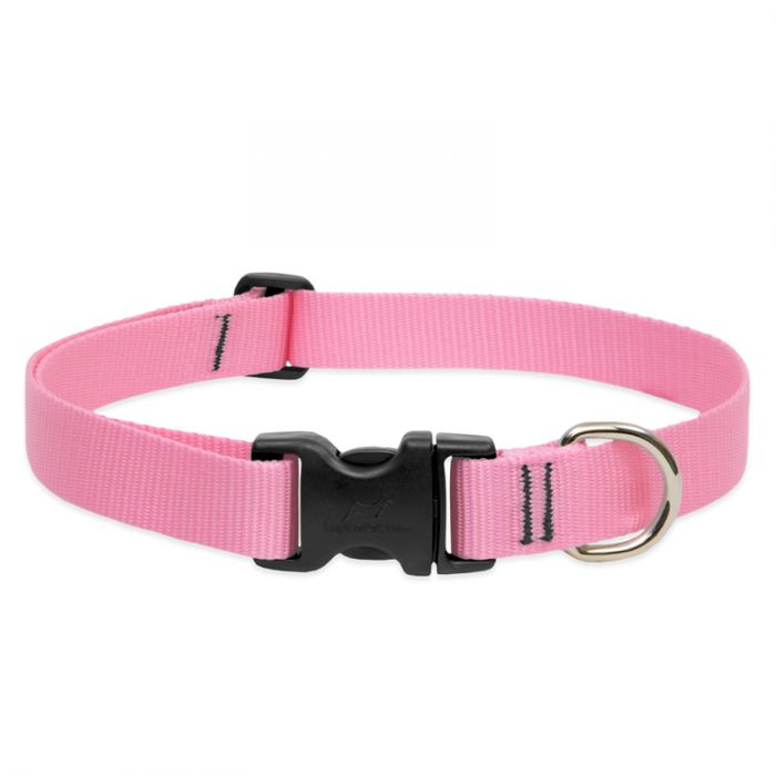 Lupine Pet Basic Solids Adjustable Dog Collar, Pink, 1-in x 12-20-in