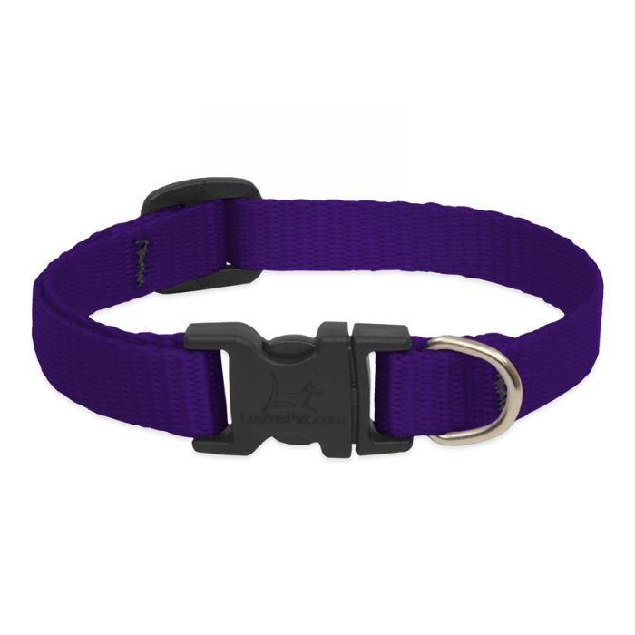 Lupine Pet Basic Solids Adjustable Dog Collar, Purple, 1/2-in 10-16-in
