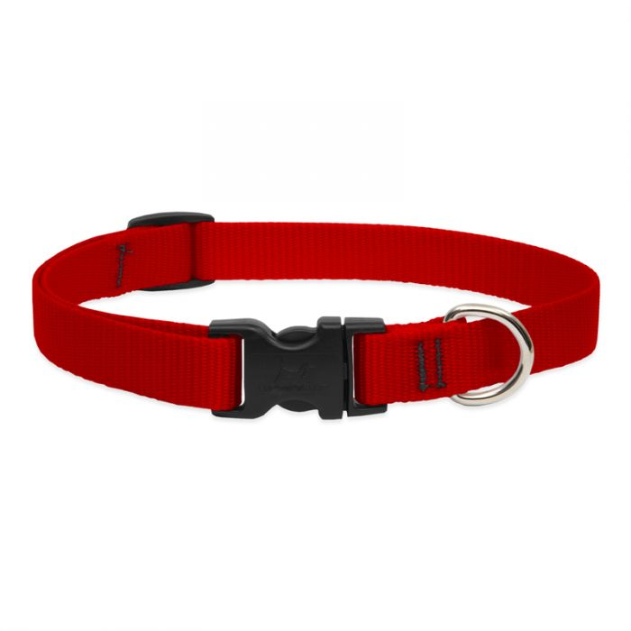 Lupine Pet Basic Solids Adjustable Dog Collar, Red, 3/4-in x 9-14-in