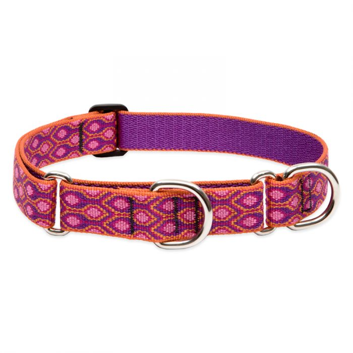 Lupine Pet Original Designs Martingale Dog Collar, Alpen Glow, 1-in x 19-27-in