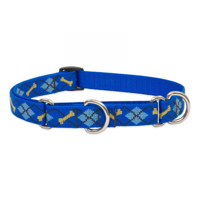 Lupine Pet Original Designs Martingale Dog Collar, Dapper Dog, 3/4-in x 10-14-in