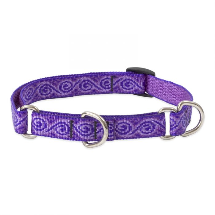 Lupine Pet Original Designs Martingale Dog Collar, Jelly Roll, 3/4-in x 14-20-in