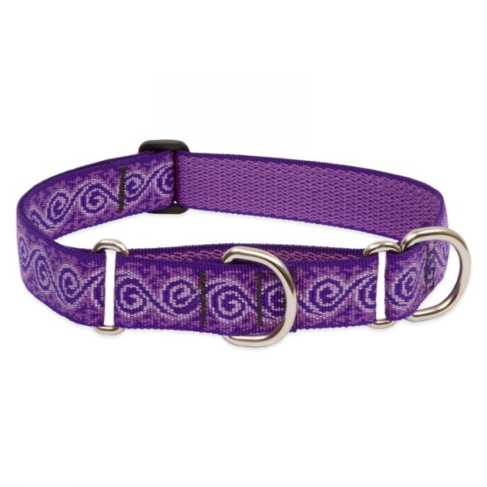 Lupine Pet Original Designs Martingale Dog Collar, Jelly Roll, 1-in x 19-27-in