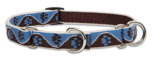 Lupine Pet Original Designs Martingale Dog Collar, Muddy Paws, 3/4-in x 10-14-in