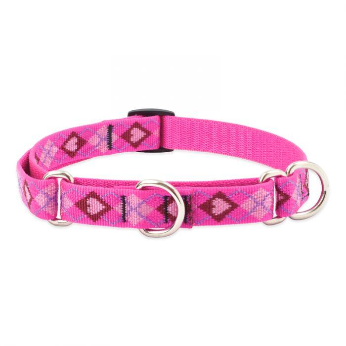 Lupine Pet Original Designs Martingale Dog Collar, Puppy Love, 3/4-in x 10-14-in