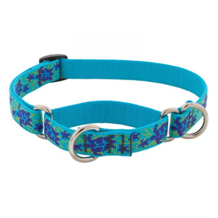 Lupine Pet Original Designs Martingale Dog Collar, Turtle Reef, 3/4-in x 14-20-in