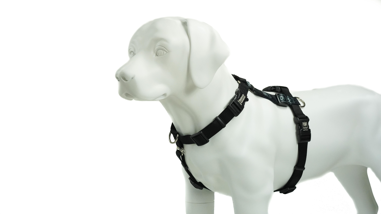 Blue-9 Balance Harness Buckle-Neck Dog Harness, Black, Large