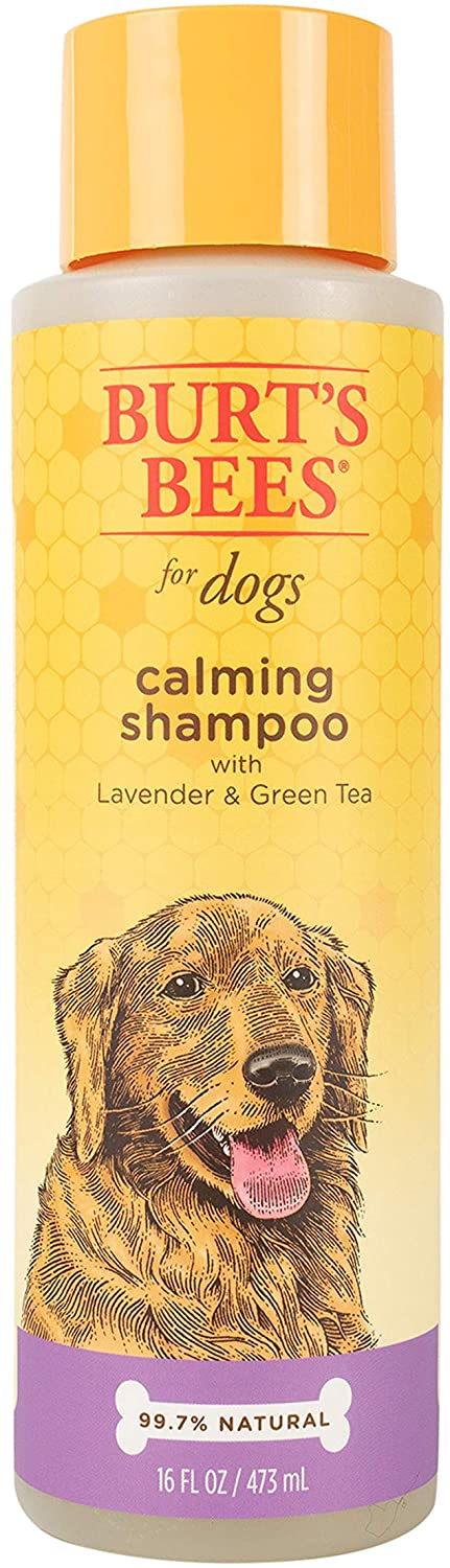 Burt's Bees Calming Dog Shampoo, 16-oz