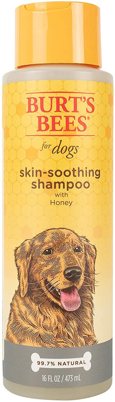 Burt's Bees Skin-Soothing Dog Shampoo, 16-oz