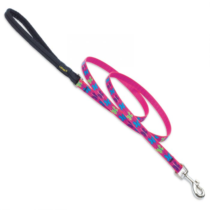 Lupine Pet Original Designs Padded Handle Dog Leash, Wing It, 1/2-in x 6-ft