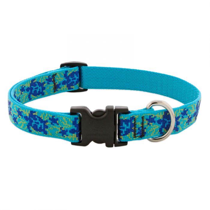 Lupine Pet Original Designs Adjustable Dog Collar, Turtle Reef, 3/4-in x 9-14-in