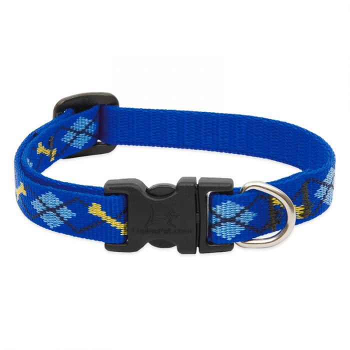Lupine Pet Original Designs Adjustable Dog Collar, Dapper Dog, 1/2-in x 10-16-in