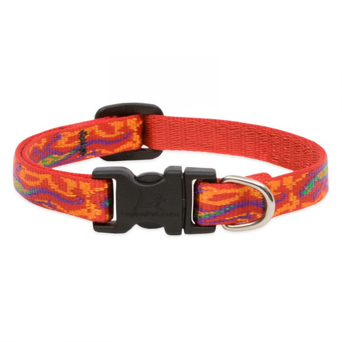 Lupine Pet Original Designs Adjustable Dog Collar, Go Go Gecko, 1/2-in x 8-12-in
