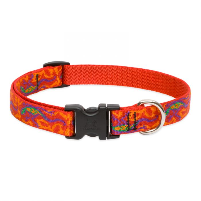 Lupine Pet Original Designs Adjustable Dog Collar, Go Go Gecko, 3/4-in x 13-22-in
