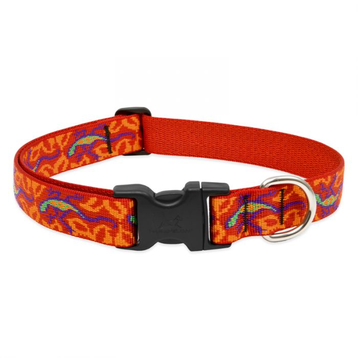 Lupine Pet Original Designs Adjustable Dog Collar, Go Go Gecko, 1-in x 12-20-in