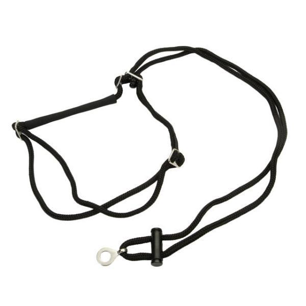 Holt Adjustable Dog Control Dog Harness, Black Image