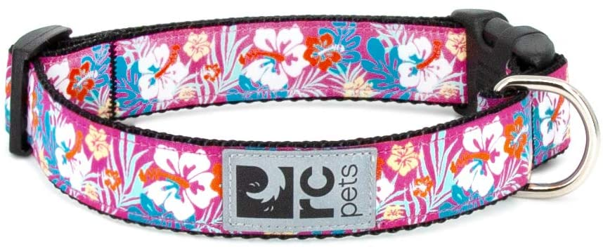 RC Pet Products Clip Dog Collar, Hibiscus, X-Small