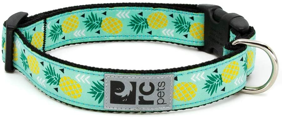 RC Pet Products Clip Dog Collar, Pineapple Parade, XX-Small