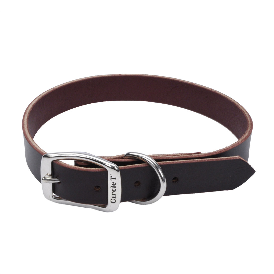 Circle T Latigo Leather Town Dog Collar, 3/4x20-in (Size: 3/4-in x 20-in) Image
