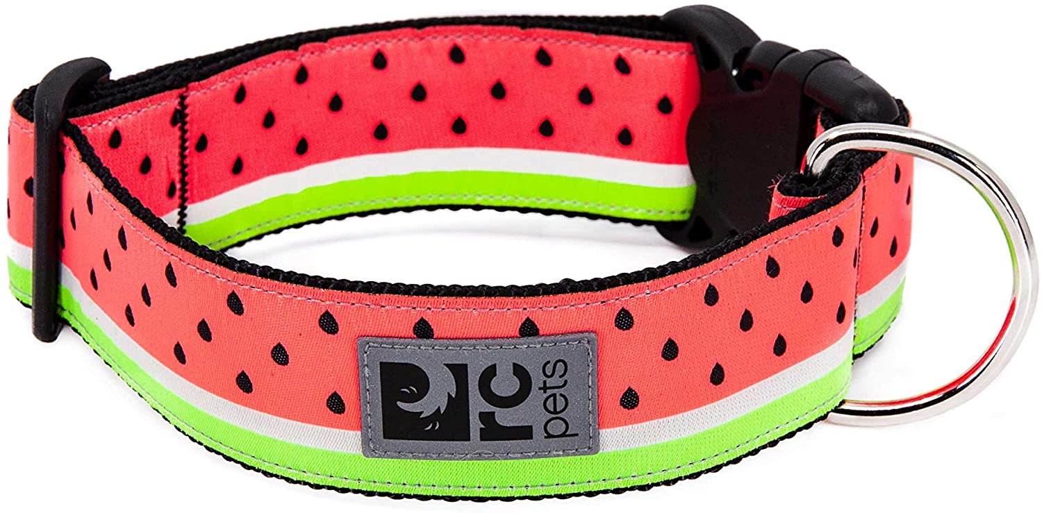 RC Pet Products Wide Clip Dog Collar, Watermelon, Large