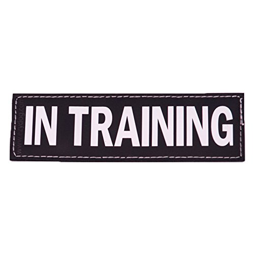 EzyDog Side Patches for Convert Harness, In training, Large