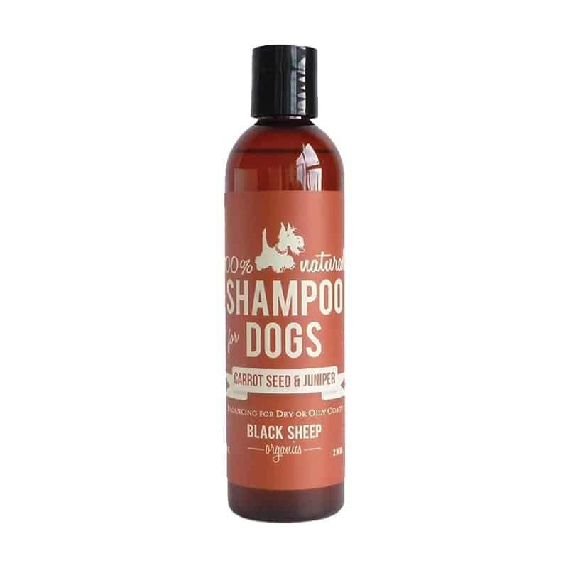 Black Sheep Organics Carrot Seed & Juniper Dog Shampoo, 8-oz