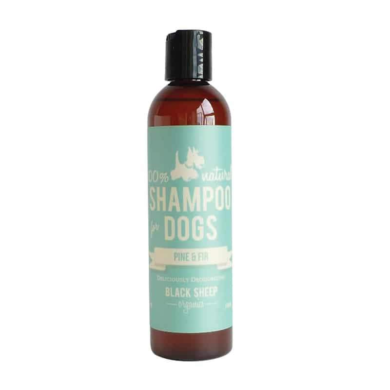 Black Sheep Organics Pine & Fir Dog Shampoo, 8-oz