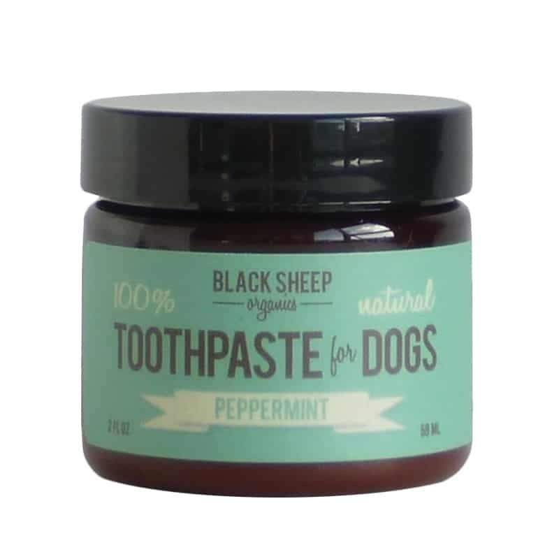 Black Sheep Organics Peppermint Toothpaste for Dogs, 2-oz