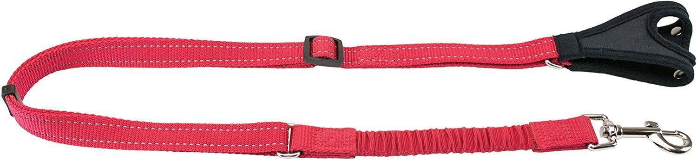 PetSafe Sport Dog Leash, Red
