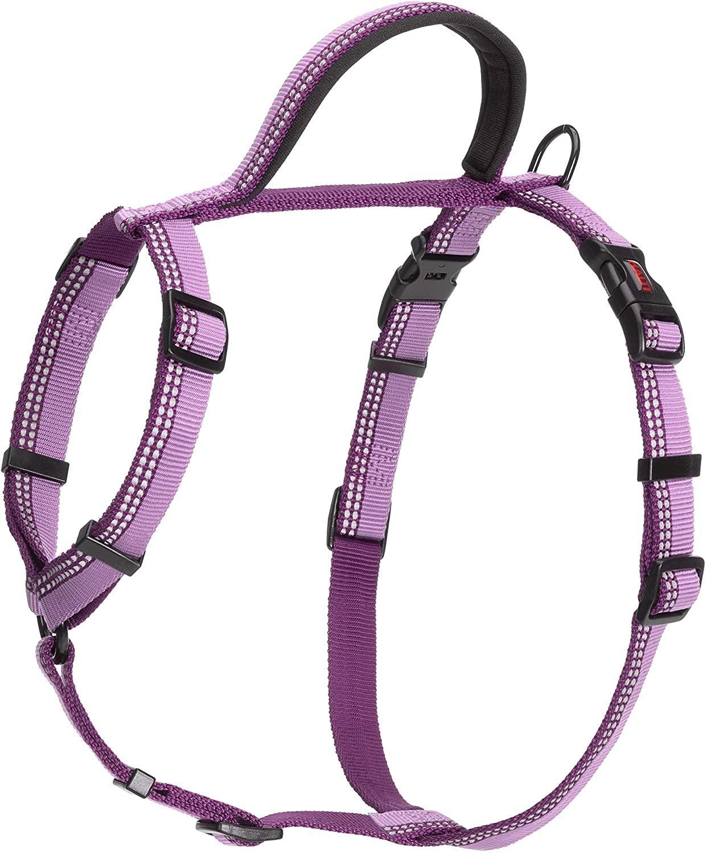 Halti Walking Dog Harness, Purple, X-Small