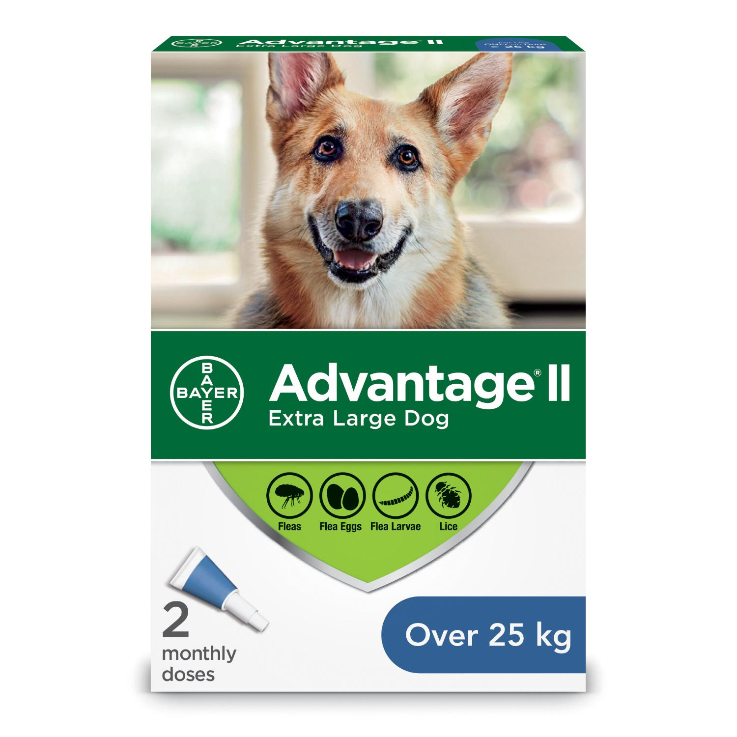 Bayer Advantage II Flea Protection for Extra Large Dogs over 25-kg Image