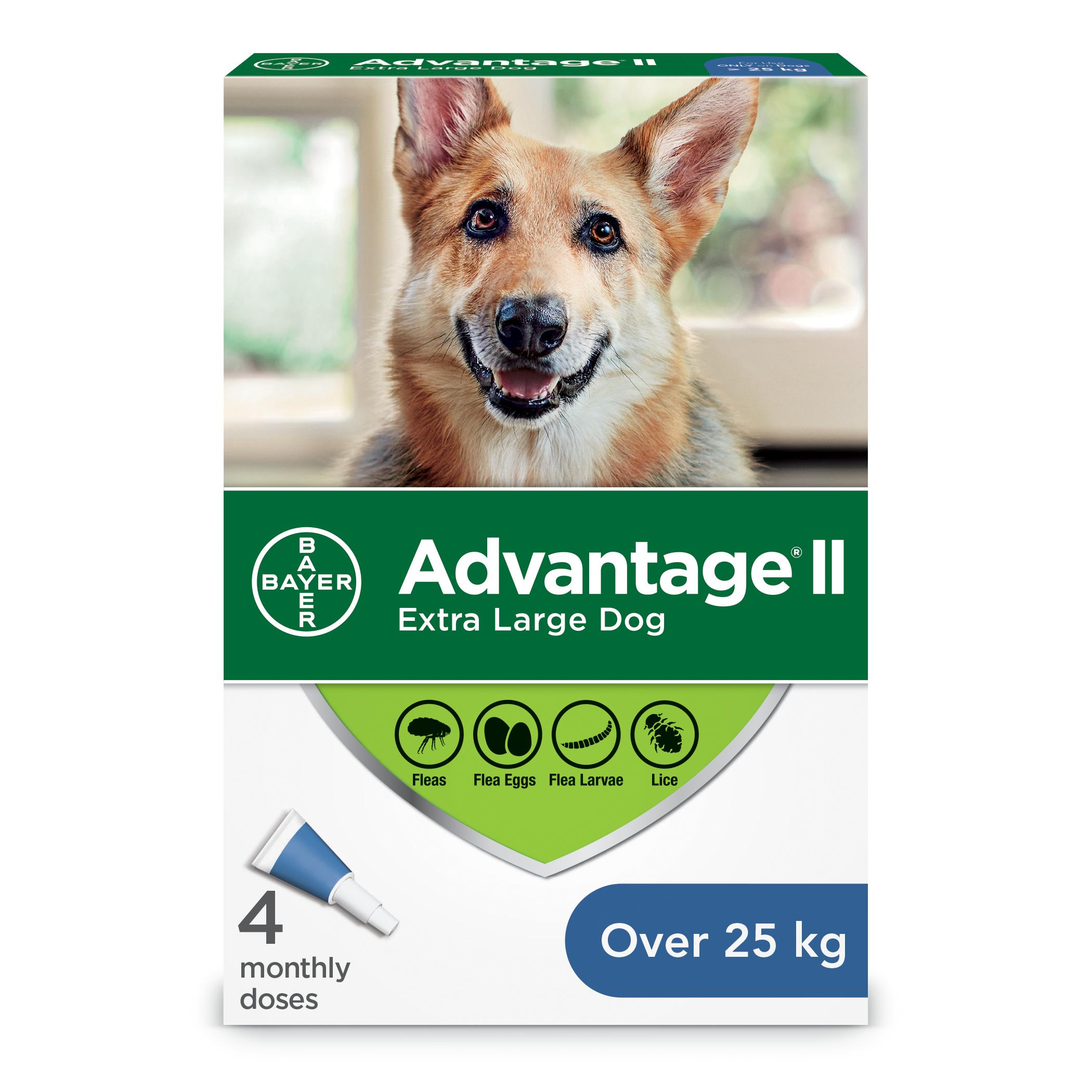 Bayer Advantage II Flea Protection for Extra Large Dogs over 25-kg, 4-pk