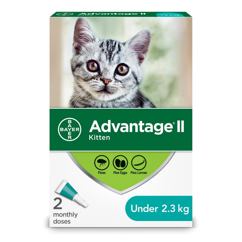 Bayer Advantage II Flea Protection for Kittens under 2.3-kg, 2-pk