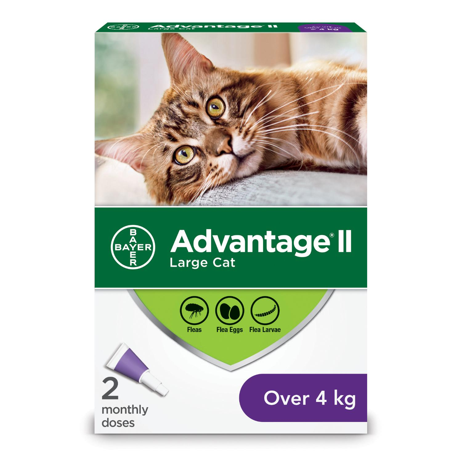 Bayer Advantage II Flea Protection for Large Cats over 4-kg, 2-pk