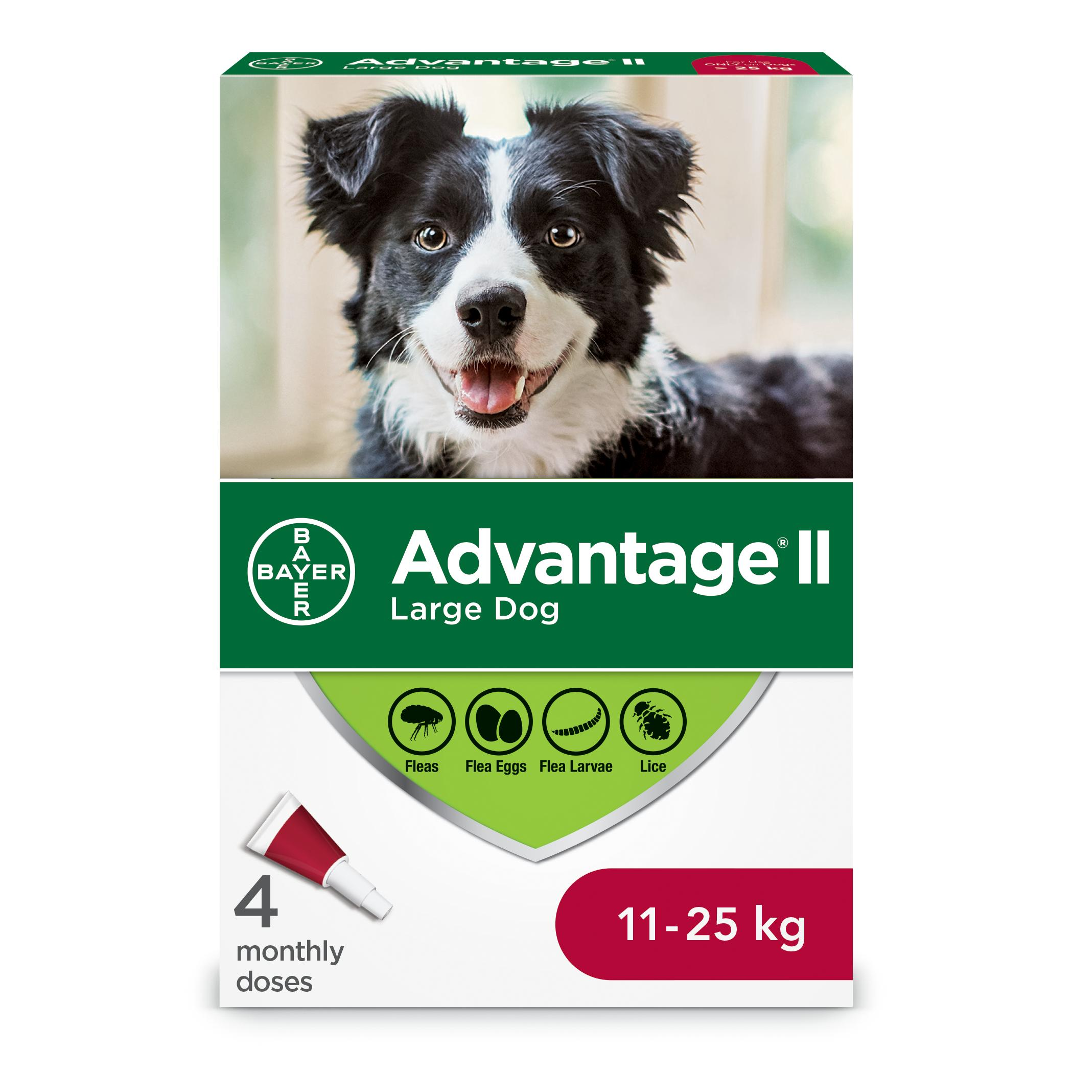 Bayer Advantage II Flea Protection for Large Dogs 11-25-kg, 4-pk