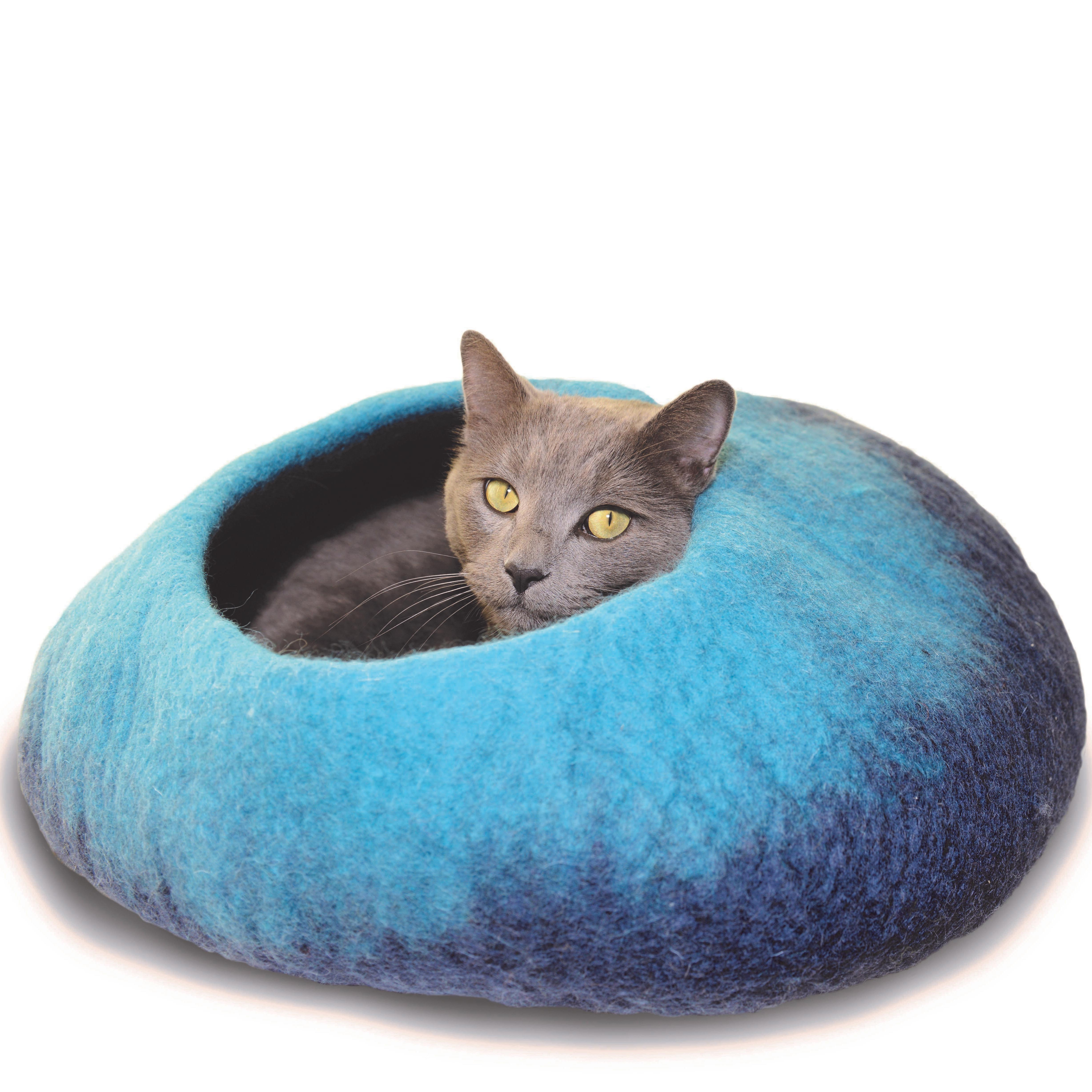 Dharma Dog Kharma Cat Ombre Navy Cave