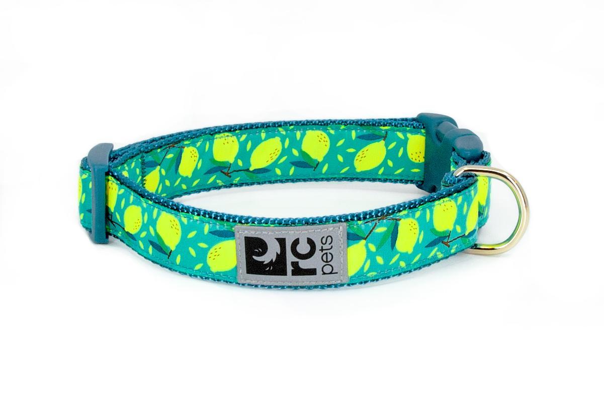 RC Pet Products Wide Clip Dog Collar, Lemonade, Medium
