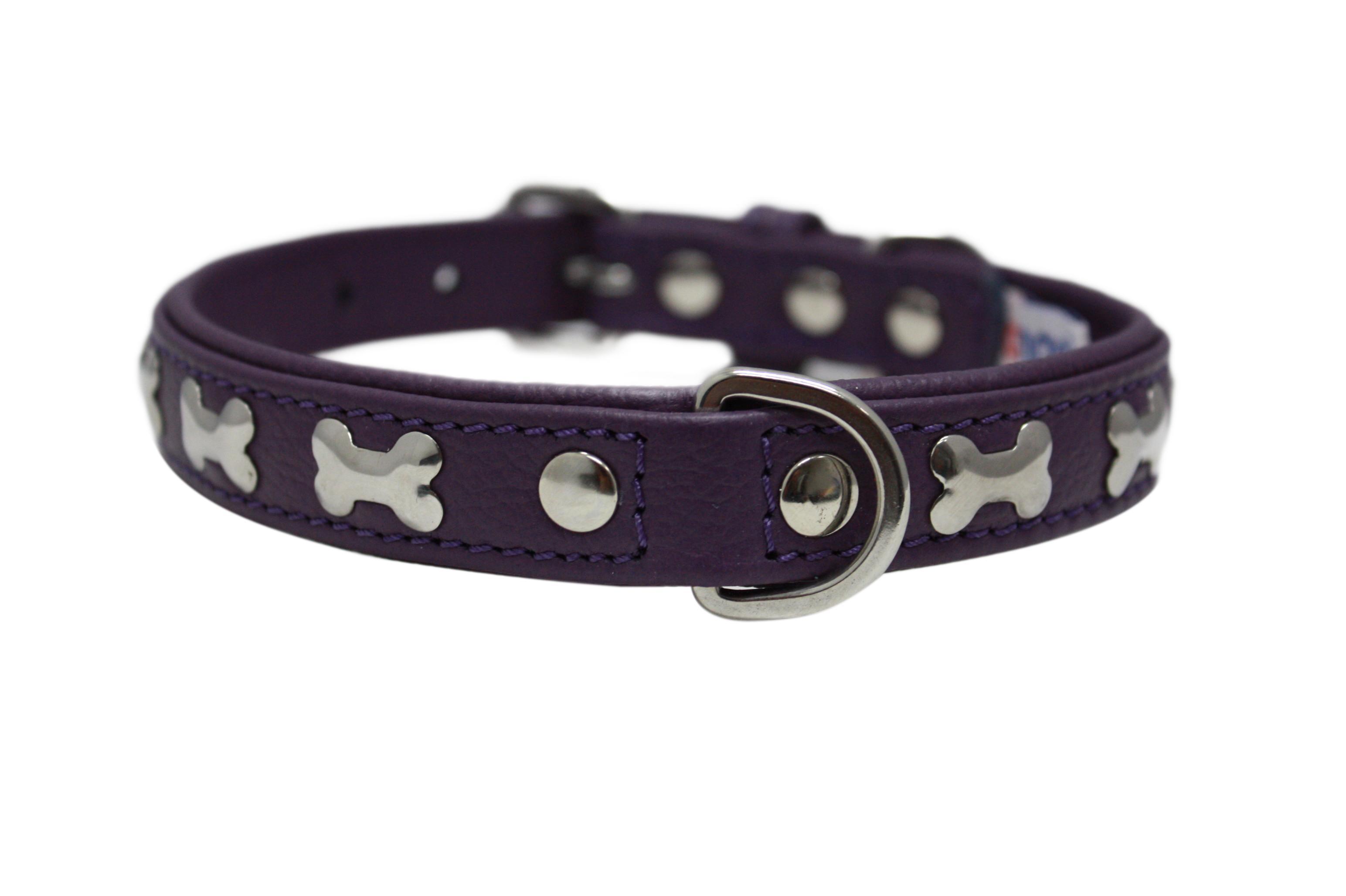 Angel Rotterdam Bones Dog Collar, Orchid Purple, 24-in x 1.25-in