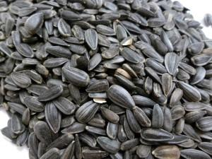 Volkman Black Oil Sunflower Seed Wild Bird Food Image