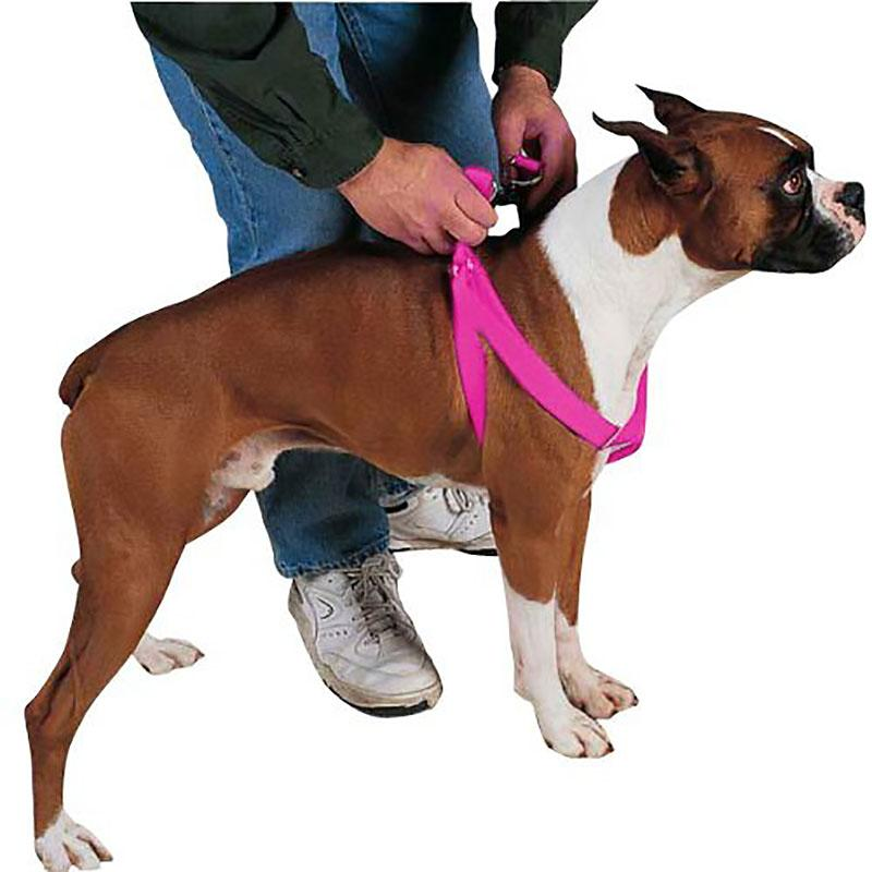 Guardian Gear Two Step Harness, Pink