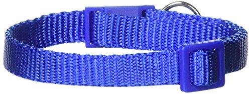 Savvy Tabby Cat Collar, Blue, 8-12-in