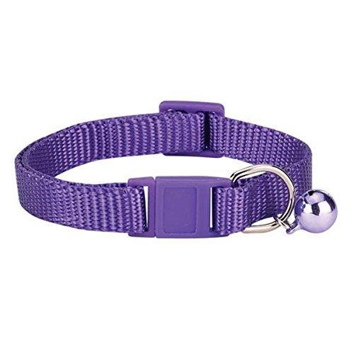 Savvy Tabby Cat Collar, Ultraviolet Image