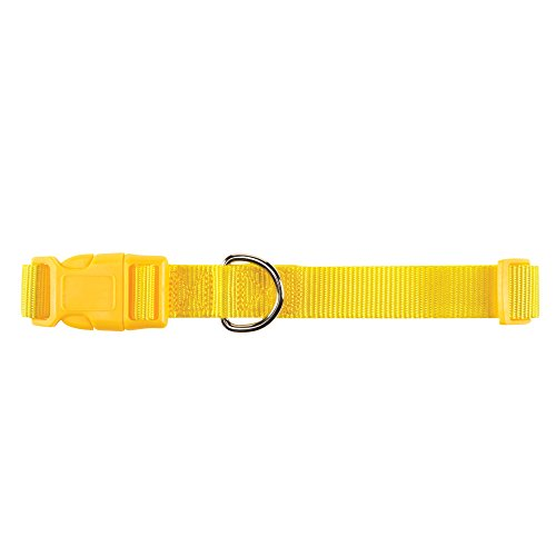 Zack And Zoey Collar, Yellow, 14-18-in