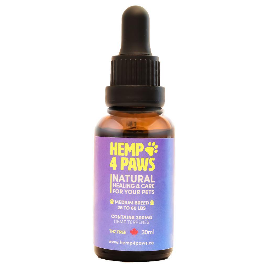 H 4 Paws H-Seed Oil Pet Supplement, Medium Breed, 300-mg