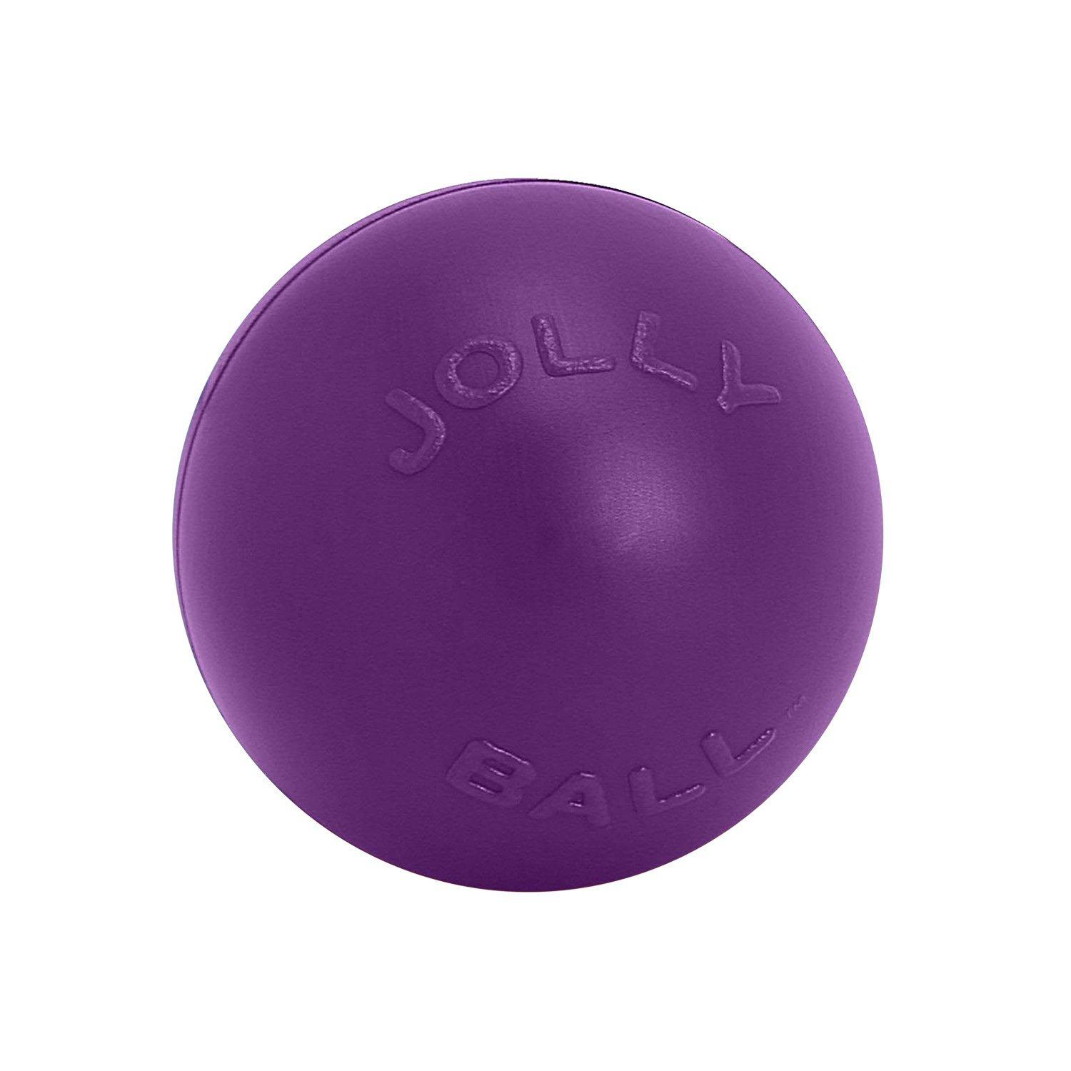 Jolly Pets Push-n-Play Dog Toy, Purple, 10-in