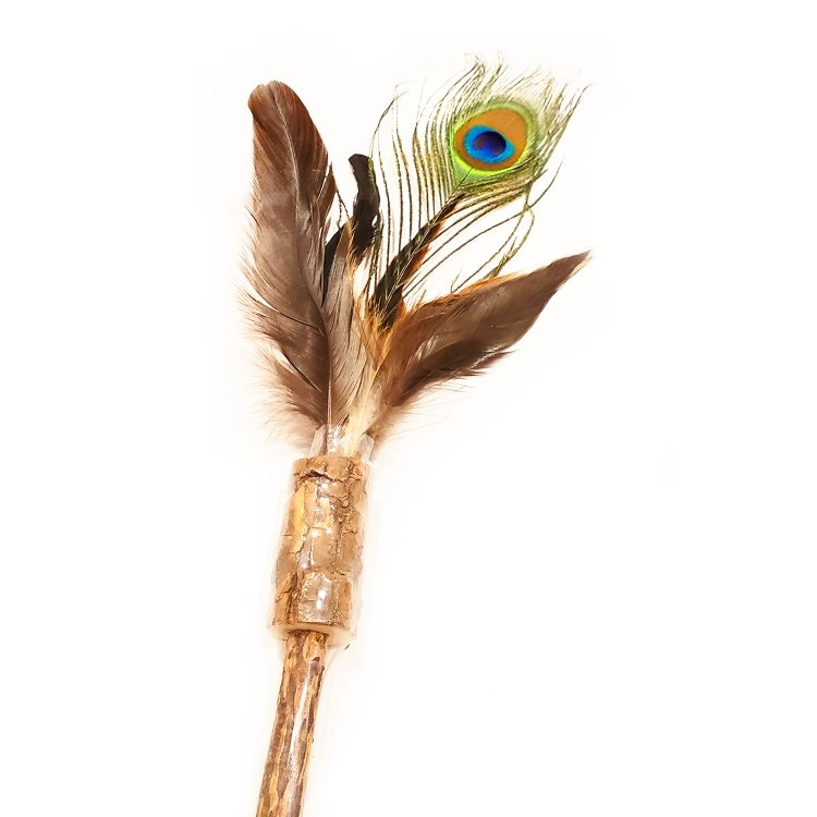 Define Planet Peacock Feather on Silver Vine Wand Cat Toy