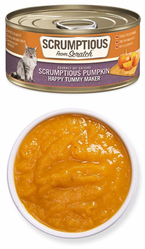 Scrumptious From Scratch Pumpkin Puree Wet Cat Food, 2.8-oz