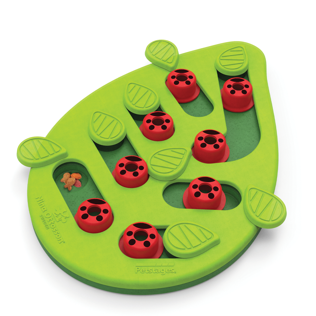 Petstages Nina Ottosson Buggin Out Interactive Treat Puzzle Cat Toy