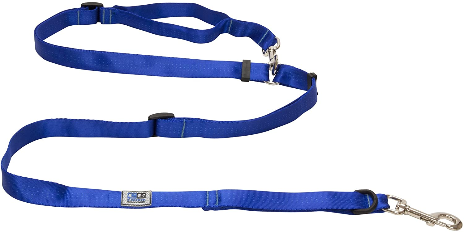 RC Pet Products Beyond Control Dog Leash, Blue, 1-in